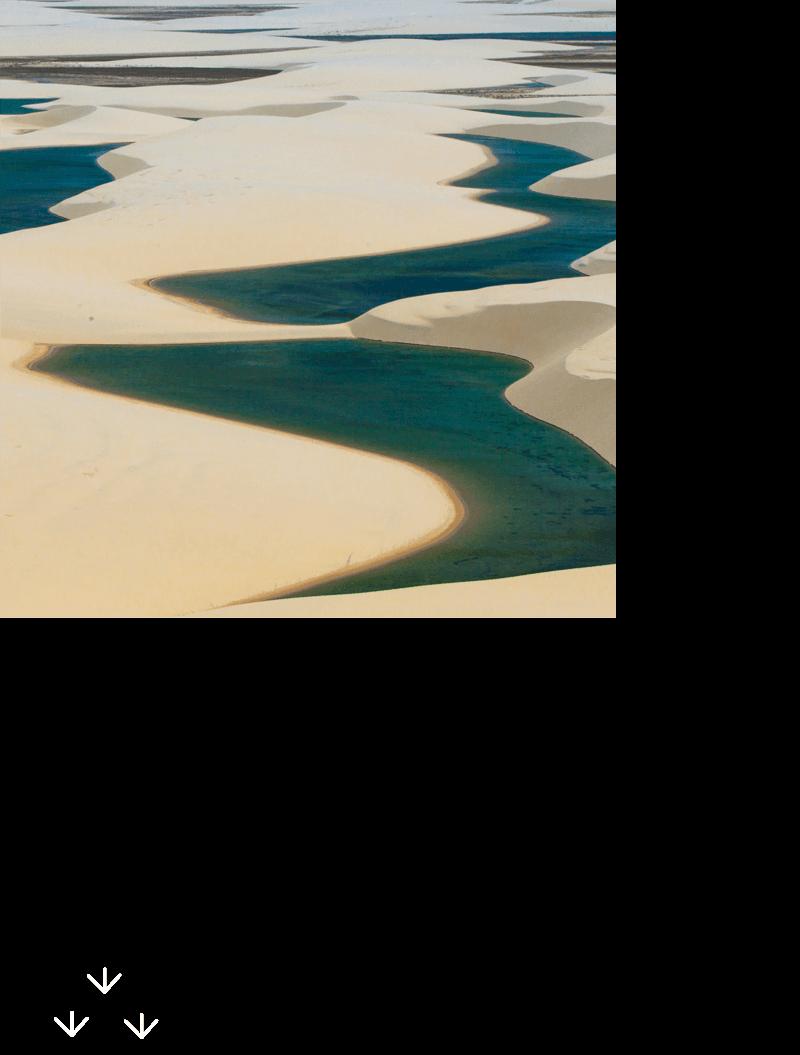生きものの母なるふるさとアフリカの水辺